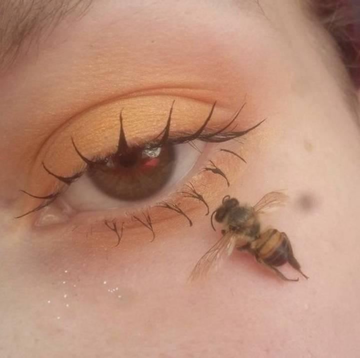 Bee Eye - Sustainable Influencer Marketing - Influencer Marketing Agency USA